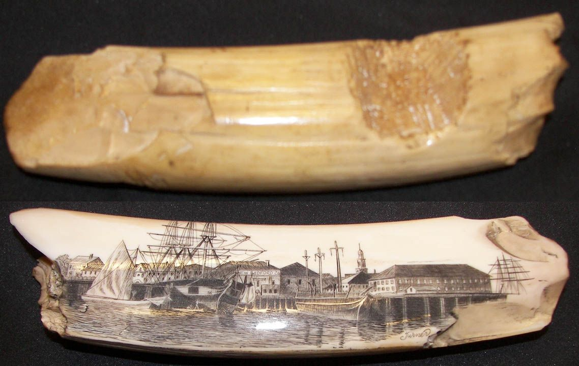 "Walrus Tusk Tool JB151  Petrified Walrus Tusk Chopping Tool with Schrimshaw scene of New Bedford, signed Turner. Measures 7 1/2"" long."