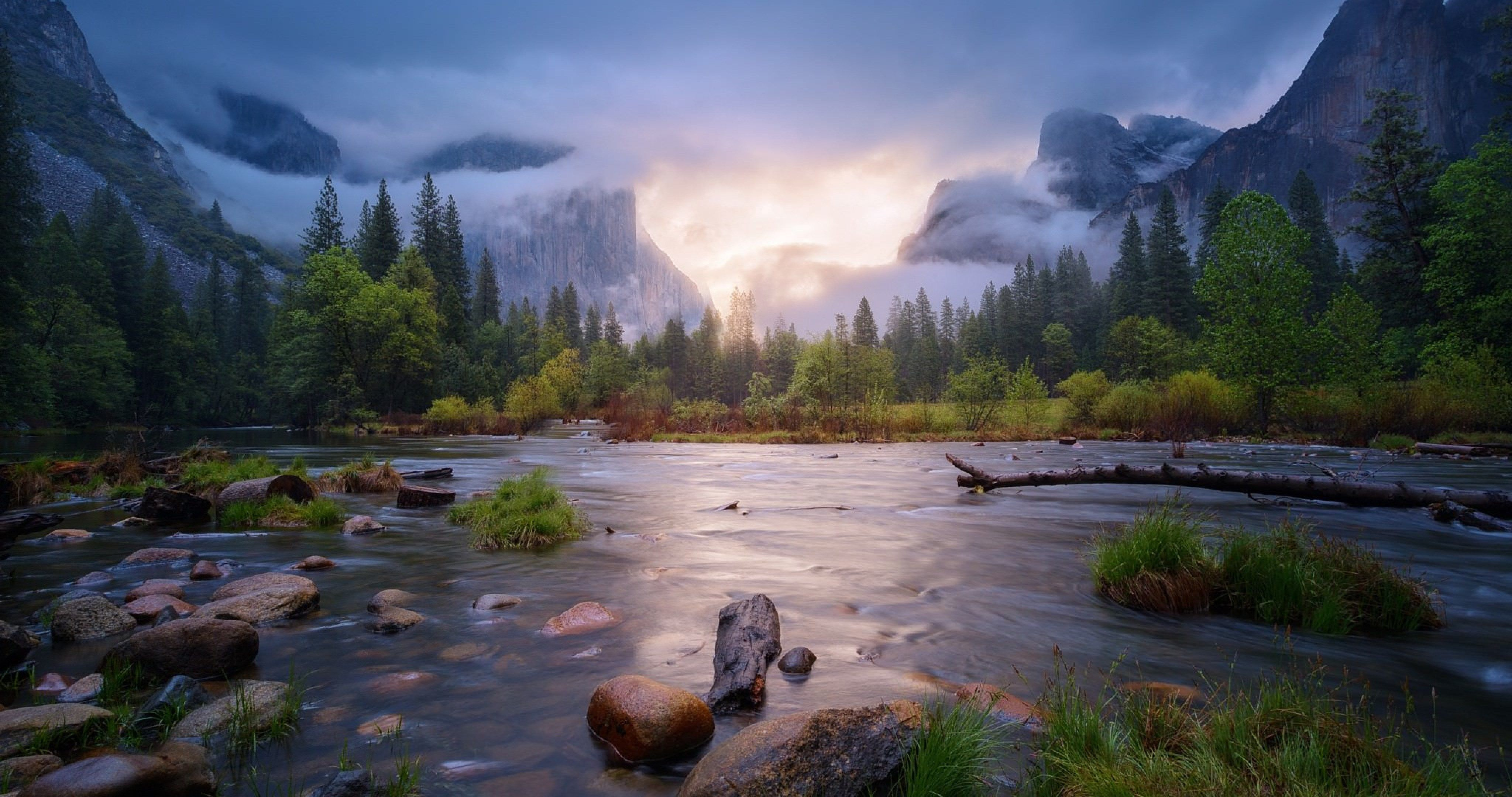 National Park Yosemite 4k Ultra Hd Wallpaper Landscape Misty Forest Nature