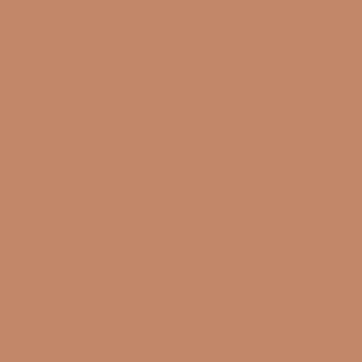 Toasted Nut Latar Belakang Warna Solid Warna Pastel Fotografi Warna
