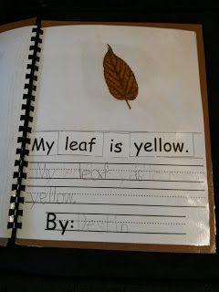 Tales of a Teacherista: Fall Lovin' in Kindergarten