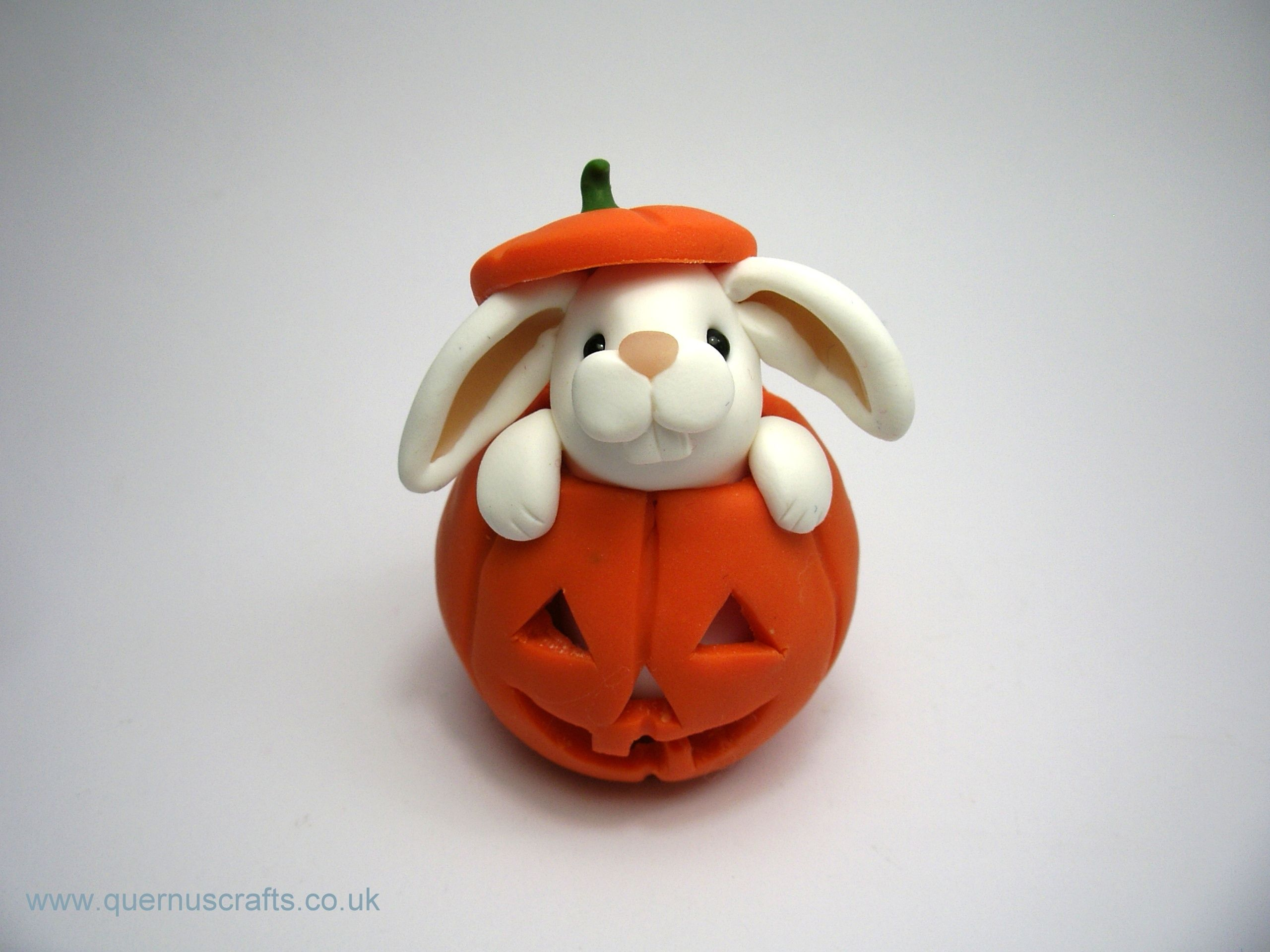 Little Bunny in Pumpkin (£30)