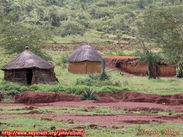 life in africa essay