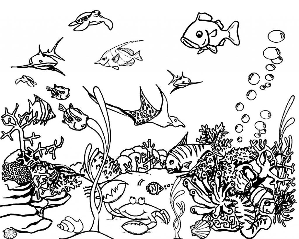 Ocean Coloring Pages Ocean Coloring Pages Sea Animals Drawings