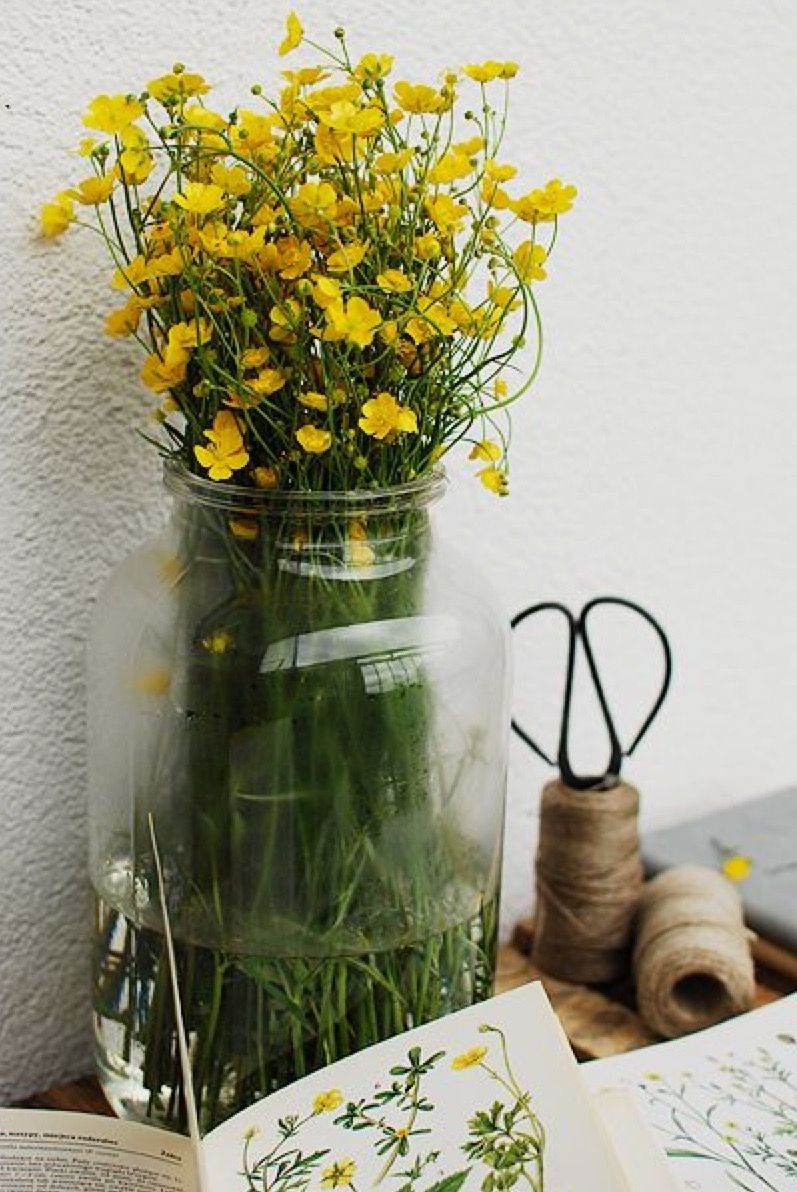 Pin by Britt on Laundry rooms Flower farm, Yellow