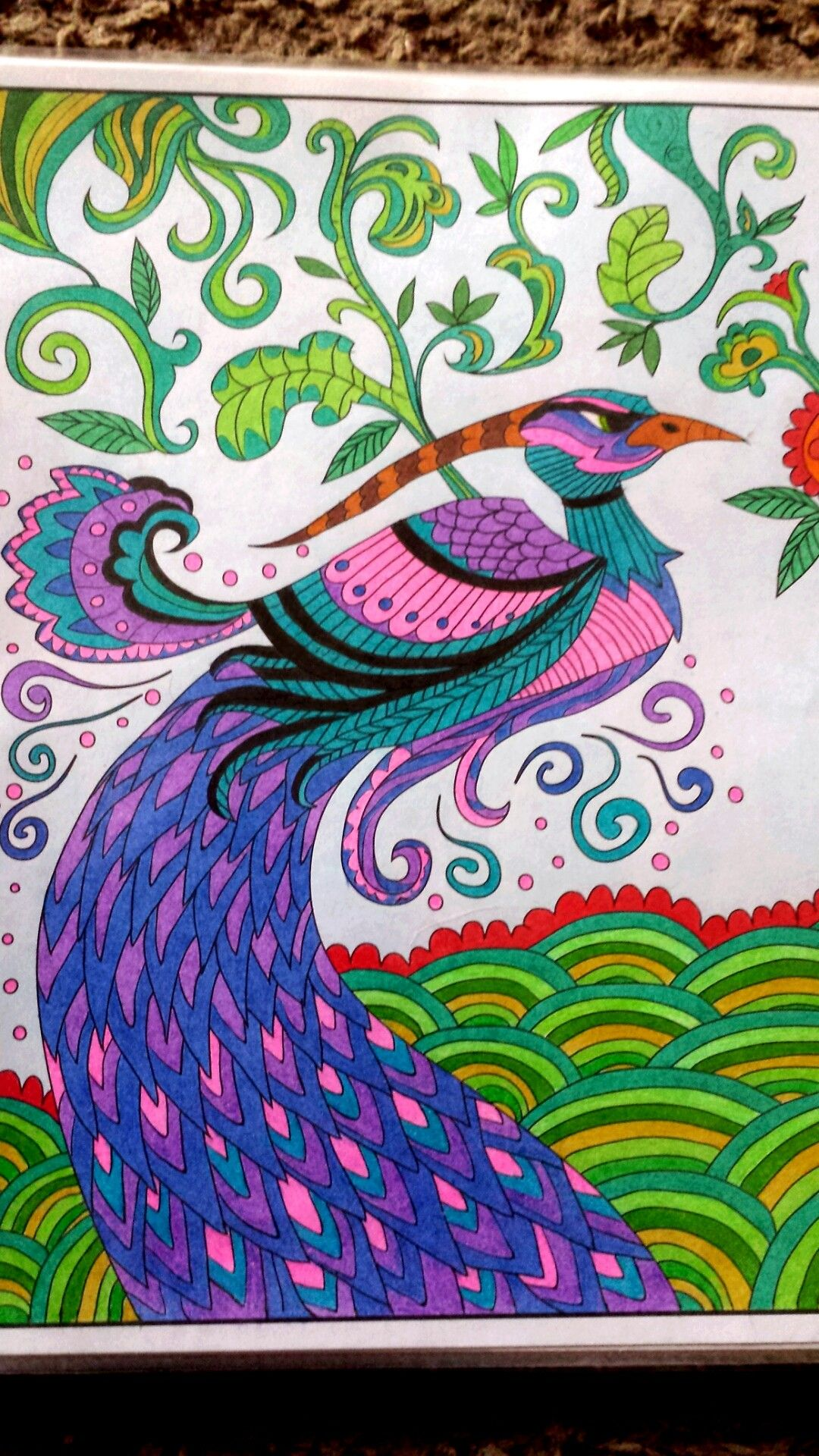 Creatures Of Beauty Coloring Book Coloring Books Creation Coloring Pages Colorful Art