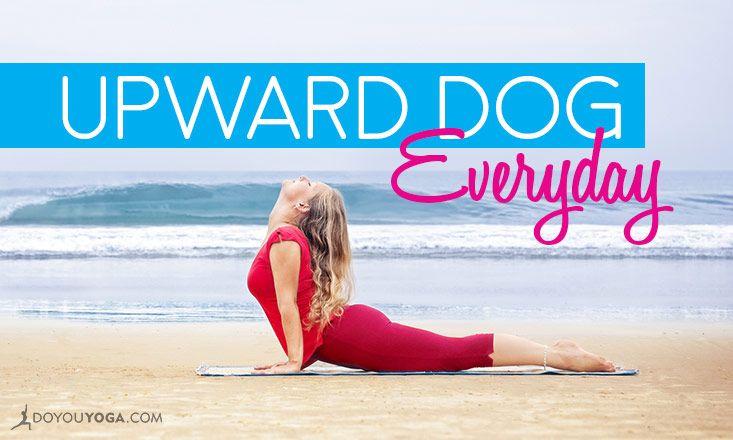 5 Reasons to Practice Upward Dog Every Day   Upward facing ...