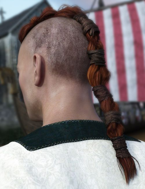 Viking Hair For Genesis 3 Males 3d Models For Poser And Daz