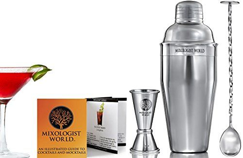 Top 10 Cocktail Shakers Of 2019 Top 10 Reviews Cocktails Top
