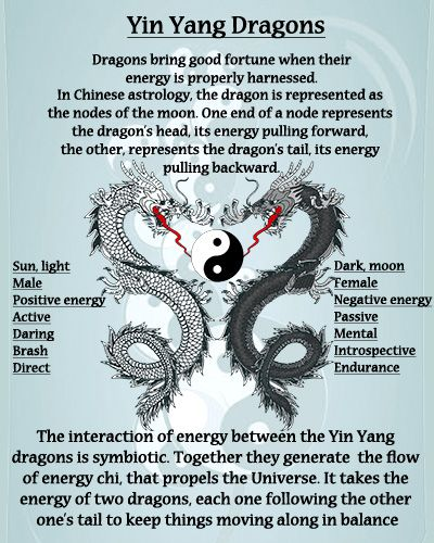 Pisces Dragon Woman Compatibility (Love & Relationship)