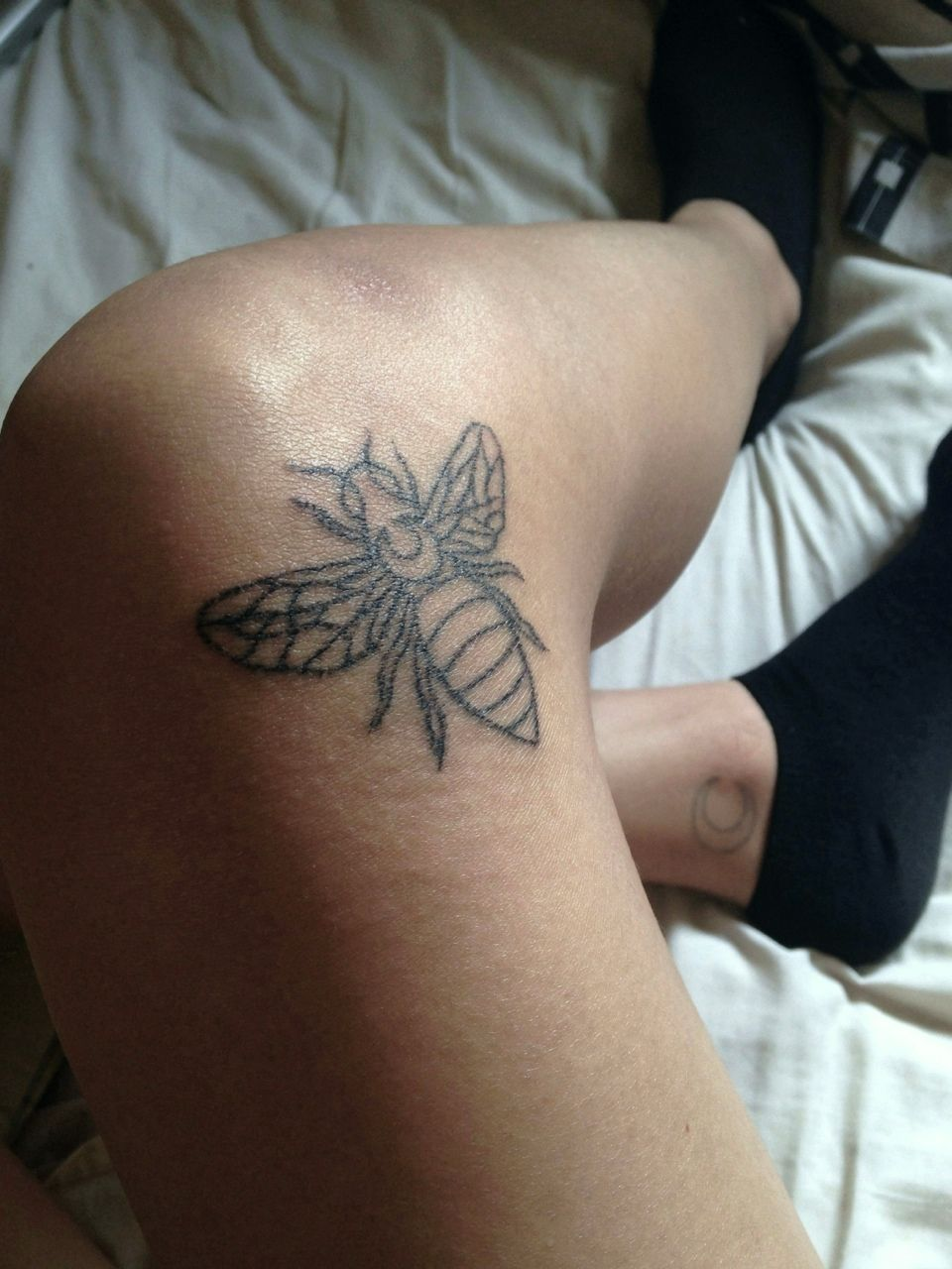 """26ba933110c83 fuckdani: """"cause I'm the bee's knees c; """" Love this. Find this Pin and more  on //tattoos// ..."""
