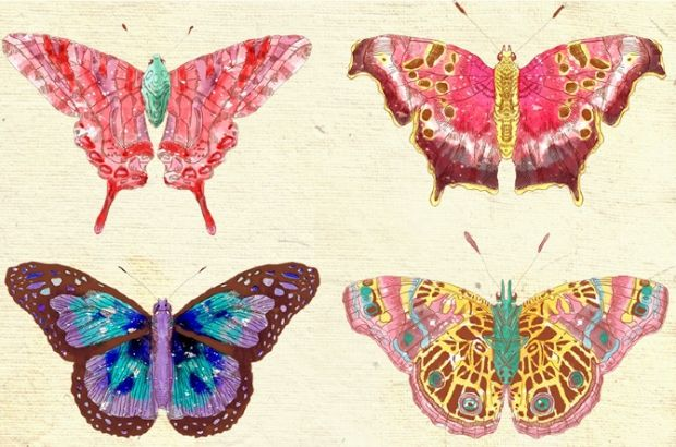 Butterfly illustrations for Biolab magazine.