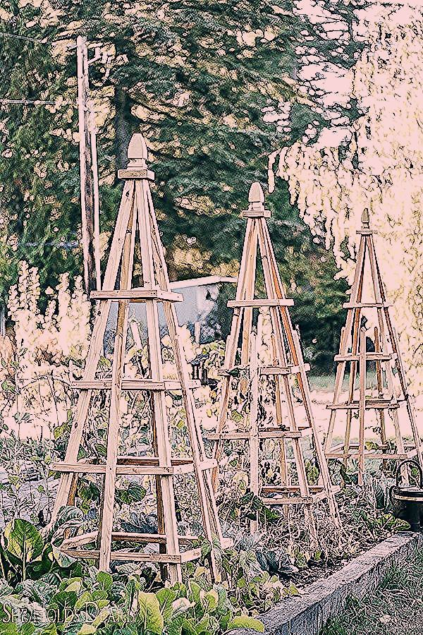 Photo of Simple DIY Garden Decorations – She Holds Dearly