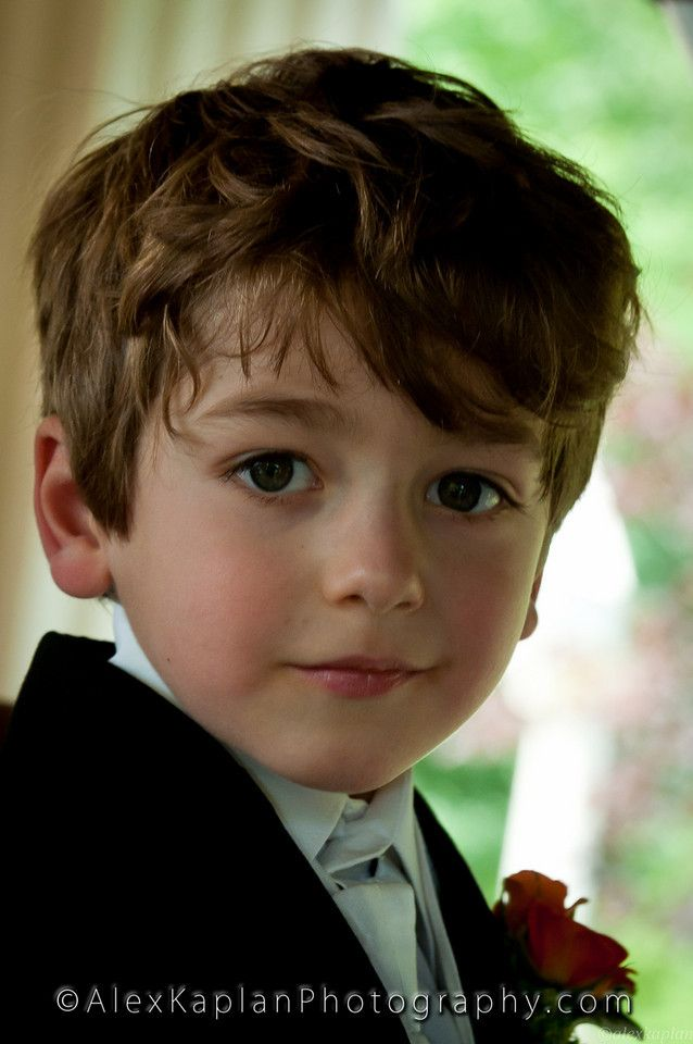 brown haired little boys - google