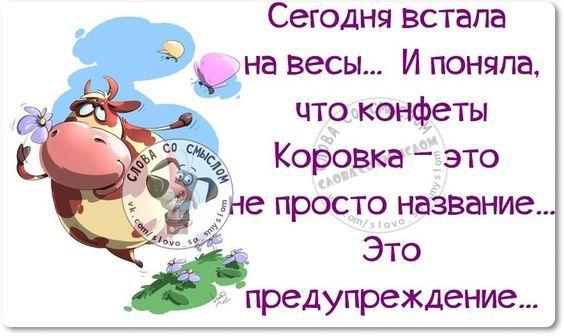 Картинки с юмором: прикольные надписи и фразы   В темпі ...