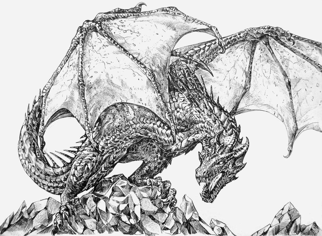 фото эскизы картинки драконов закоряженных мест рядом