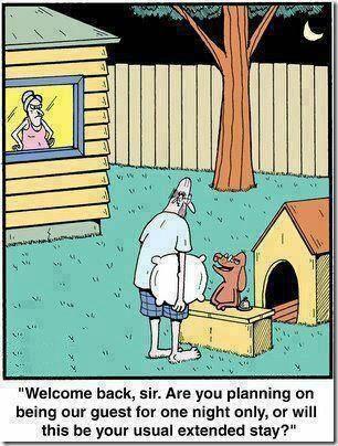 Husband Doghouse Sleep Wife Argue Funny Cartoons Funny