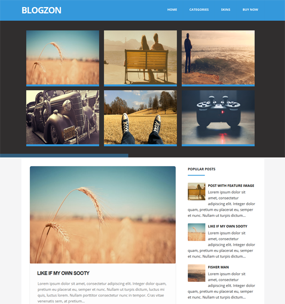 This flat Blogger template comes with 5 predefined color variations ...