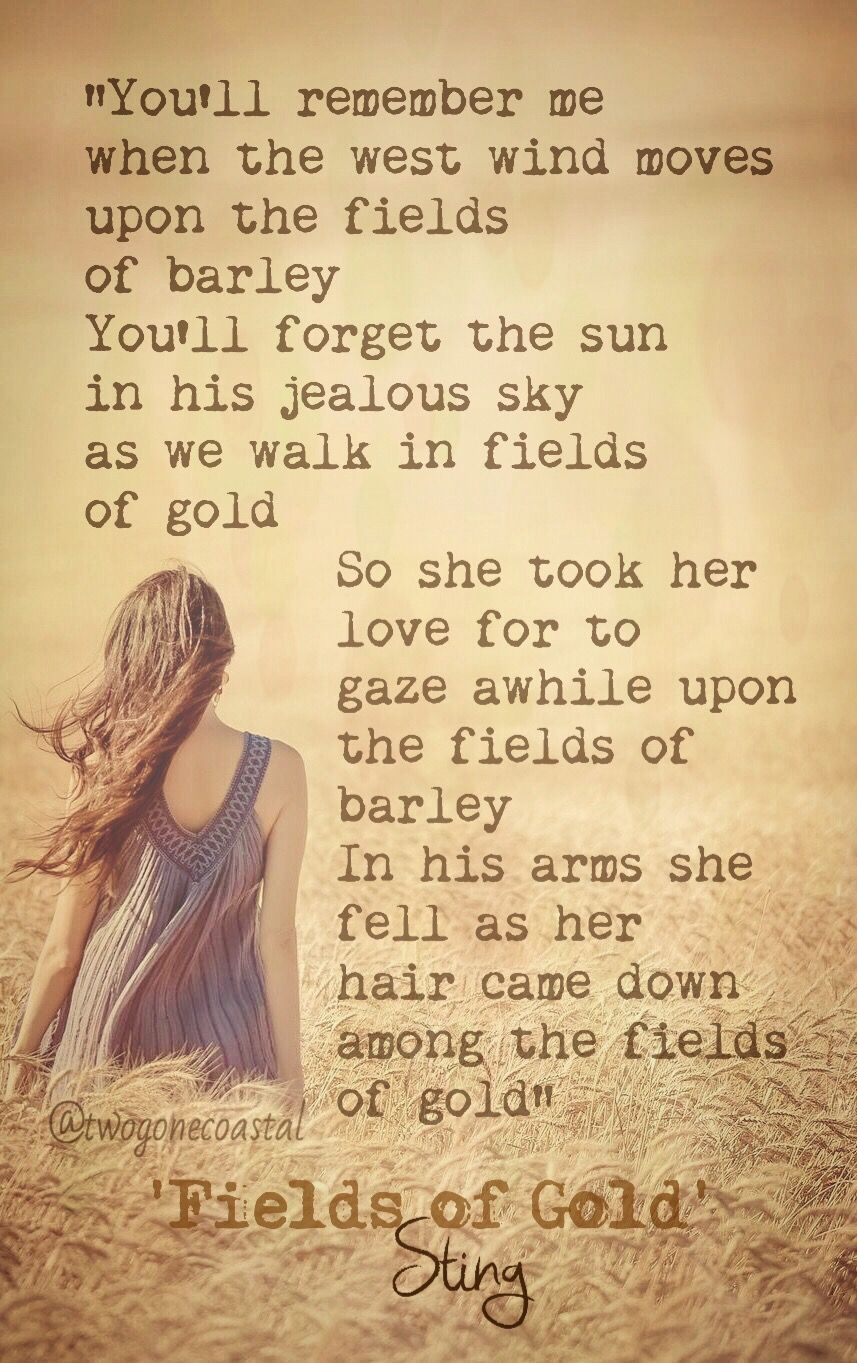 Fields Of Gold Sting Fields Of Gold Best Songs Wind Quote