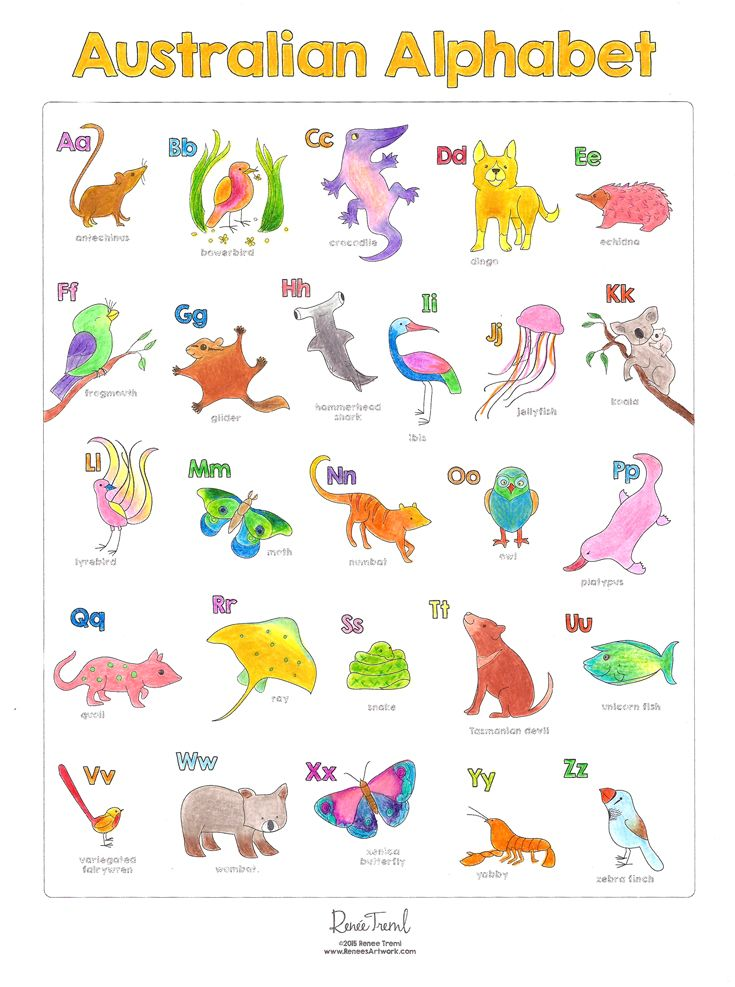 Australian Animals Alphabet Chart Designed By Renee Treml In The