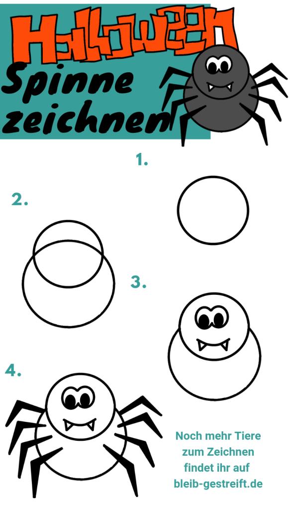 spinnen zeichnen lernen  zeichnen zeichnen lernen und
