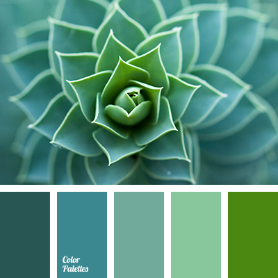 Color Palette 2942 Spirals In Nature Patterns