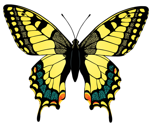 Yellow Butterfly Png Image Butterfly Pictures Yellow Butterfly Beautiful Butterfly Images