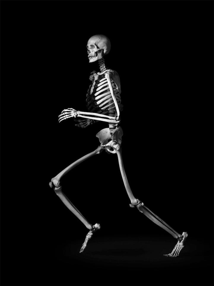 цвет фото скелетов календарь самом