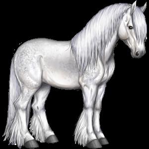 Nemet cheval de trait percheron gris pommel 29 - Dessin cheval de trait ...