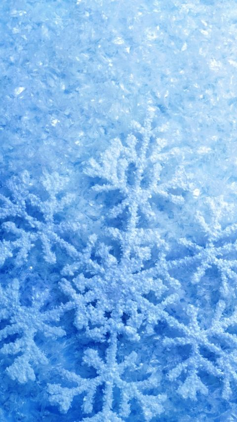 Download Wallpaper 480x854 Snowflakes Ice Glitter Frost