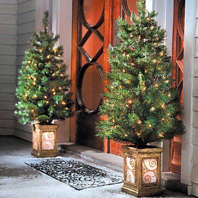 amazoncom 4 ft pre lit entryway trees set of 2 - Amazon Pre Lit Christmas Trees