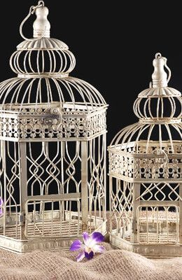 Cream Metal Birdcage ( set of 2)