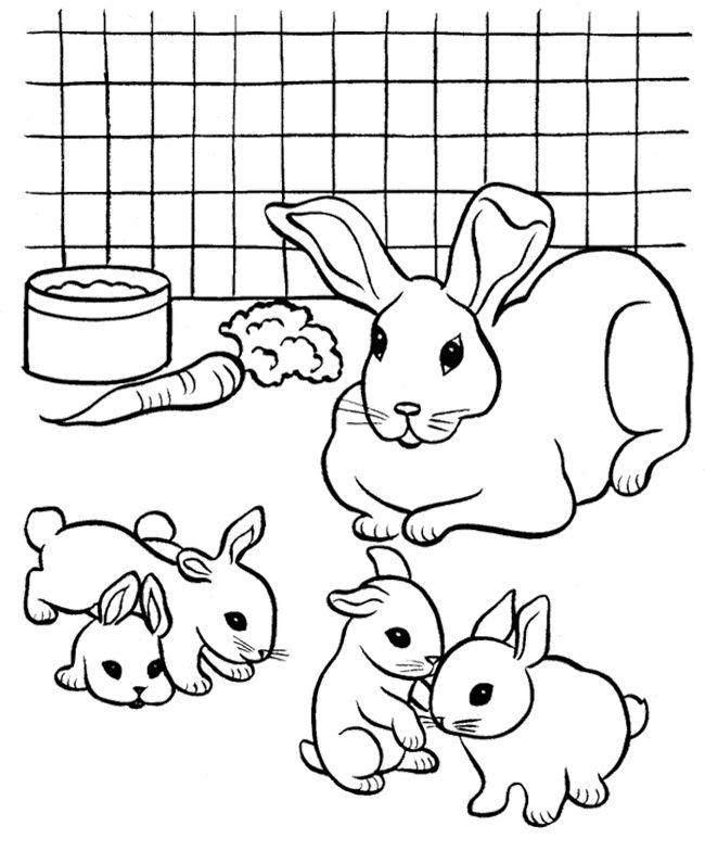 Rabbit Coloring Pages : Pet Rabbit Coloring Page | Kids Coloring ...