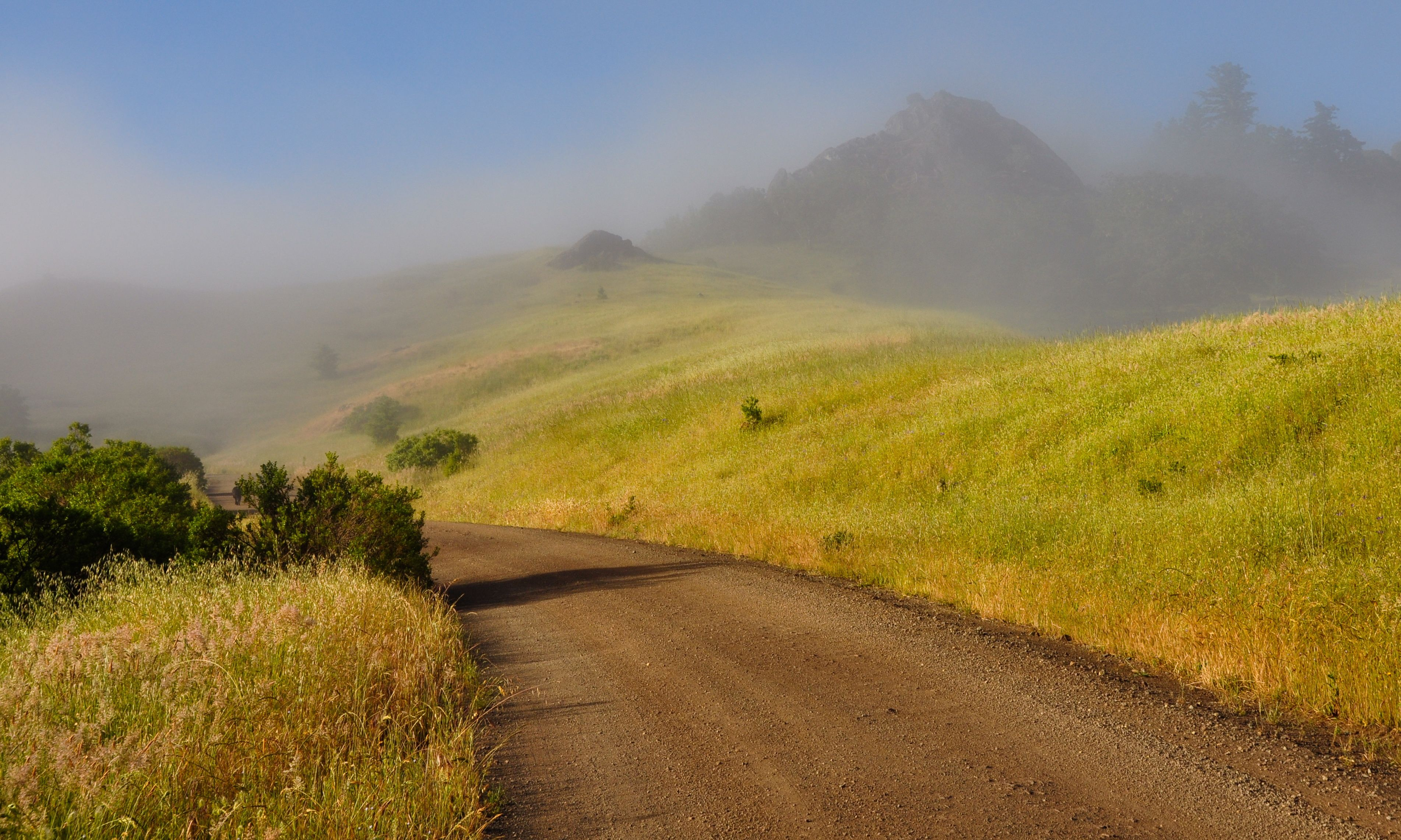 Morning hill at the road