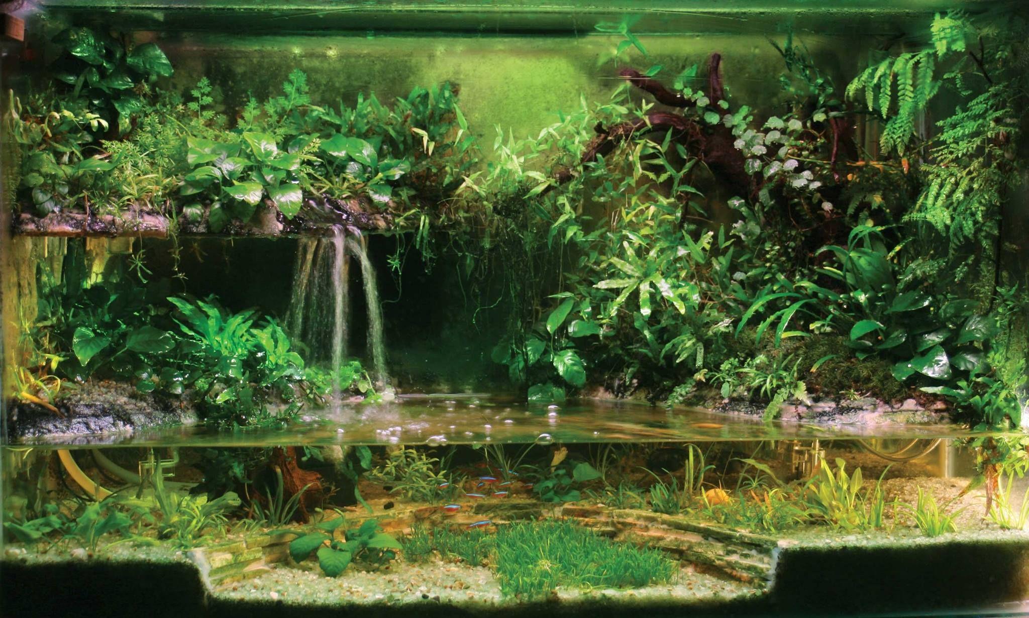 45d3a813733c554c6baa9ebe292be18b Incroyable De Aquarium Deco Des Idées
