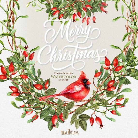 Watercolor Christmas Clipart Mistletoe Briar Red Cardinal