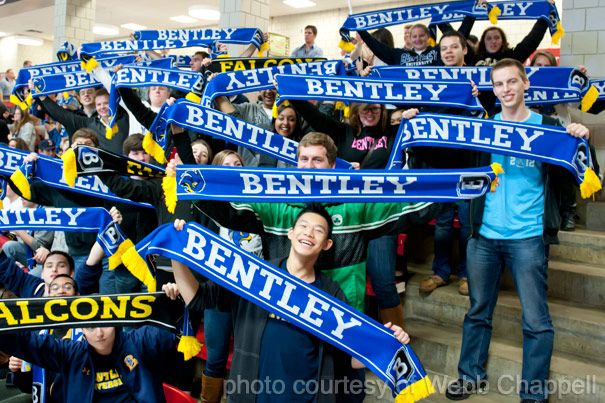 Custom Bentley University Falcons scarves!  Customize your own sports scarves and promote your team today!