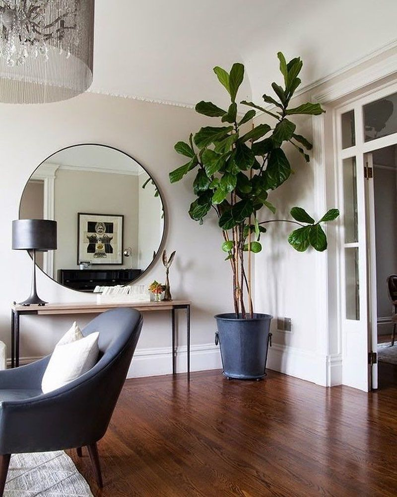 Insomdook Living Decor Home Decor Inspiration Victorian Living Room #oversized #wall #mirrors #for #living #room
