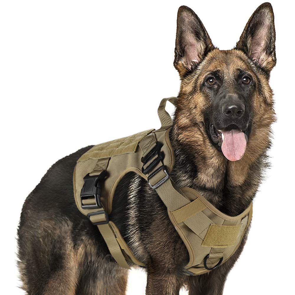 Dog vest for service working walking hiking hunting