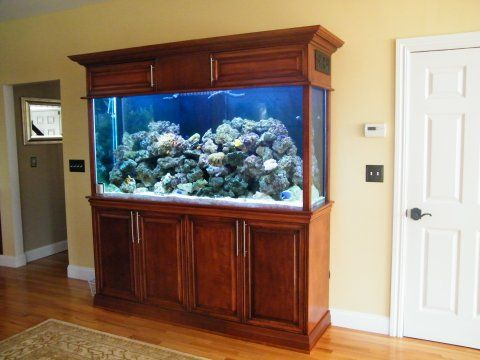 Custom aquarium cabinets and stands for freshwater and for Fish tank cabinets