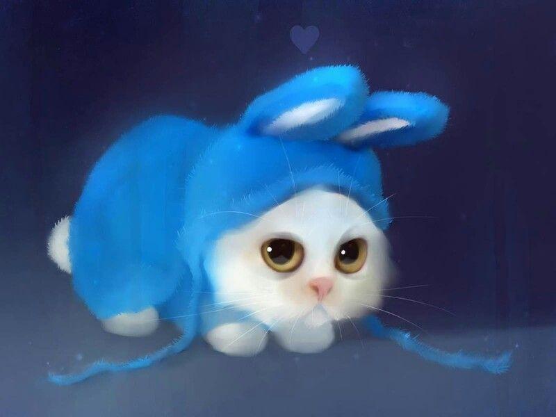 Bunnykitty
