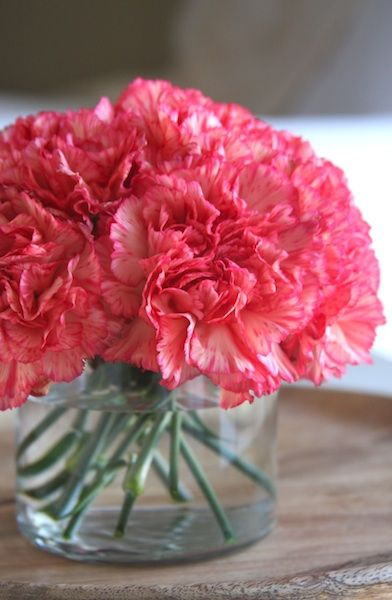 Carnation Flower Arrangement A Homemade Living Carnation Flower Flower Arrangements Carnation Centerpieces