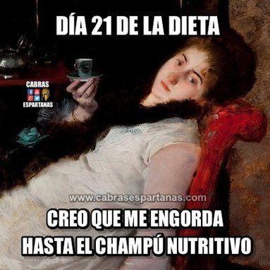 Imágenes Y Memes De Humor Imagenes De Humor El Humor Y