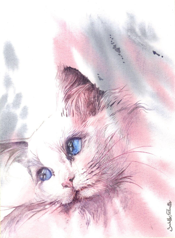 Tableau chaton blanc 2 45d6152d6dfd457fcff57e0d5dc71872
