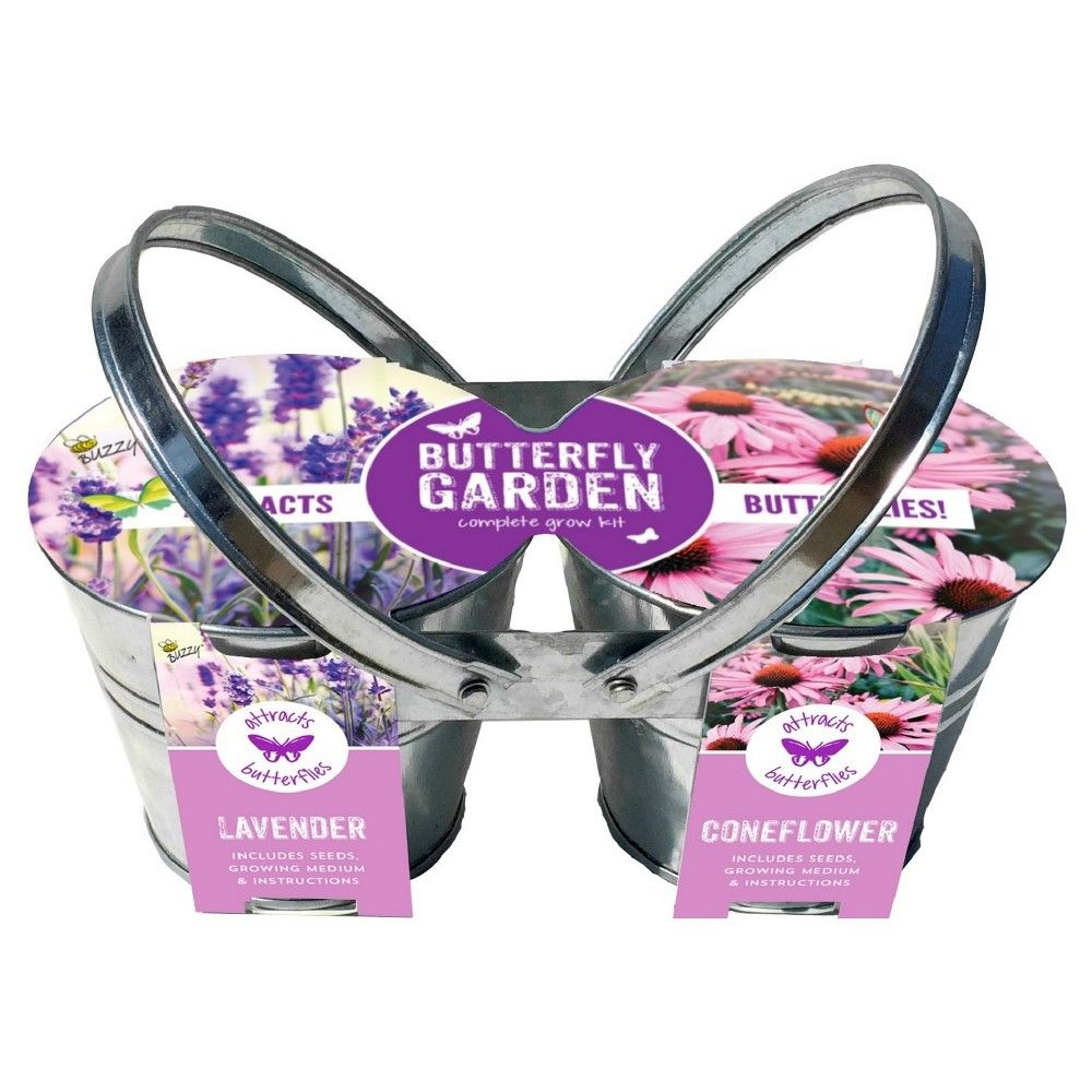 Buzzy Carry And Grow Rose Garden Grow Kit Silver Products