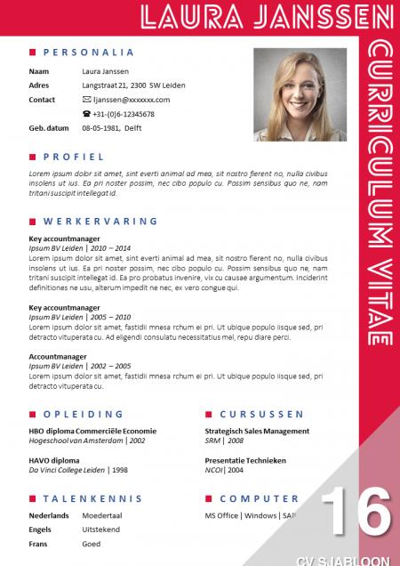 Opvallend CV sjabloon, eenvoudig zelf te bewerken in MS Office