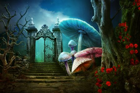 Theater Backdrops And Scenery With Images Wonderland Art