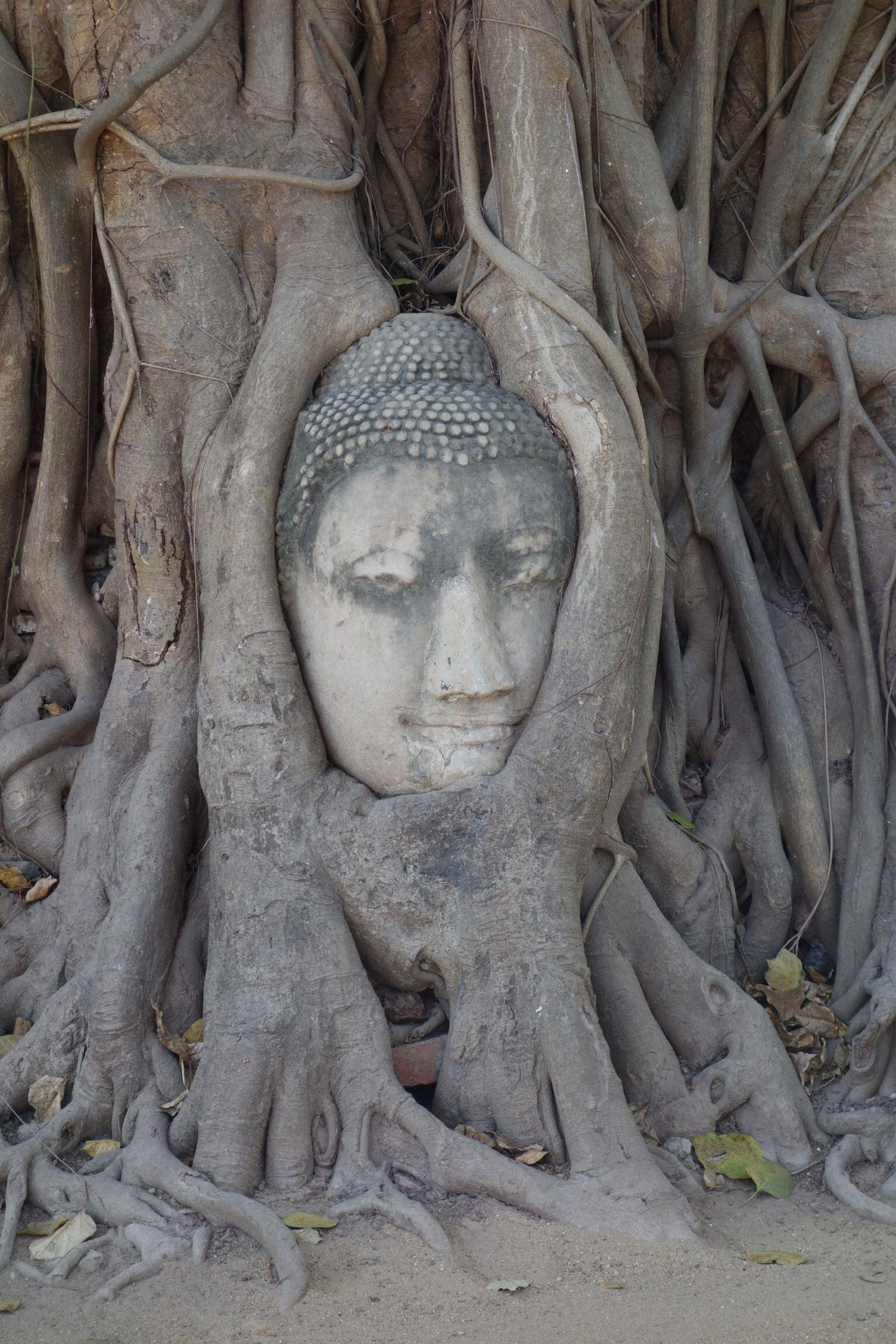 Ayutthaya. Wat Phra Mahathat