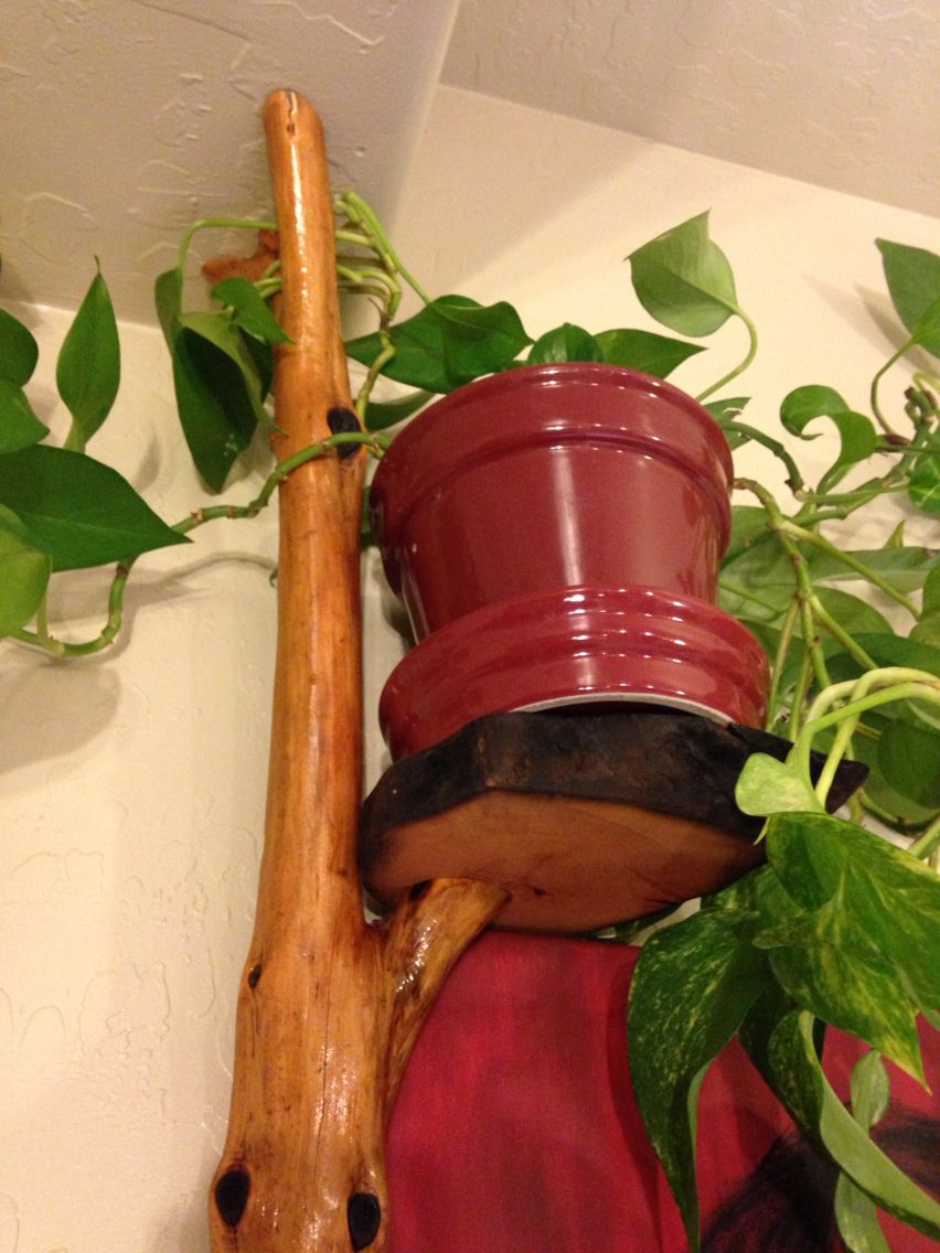 Wall mount plant holders made from found wood in the Las Vegas valley