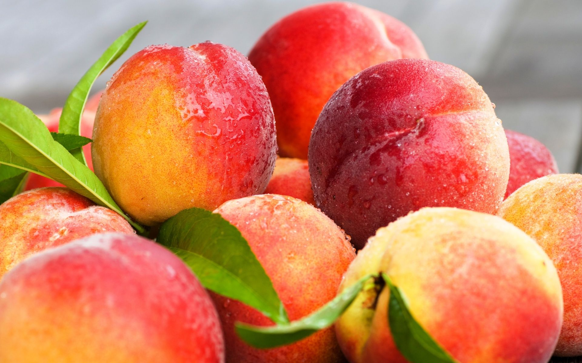 Peaches HD Wallpapers Find best latest Peaches HD