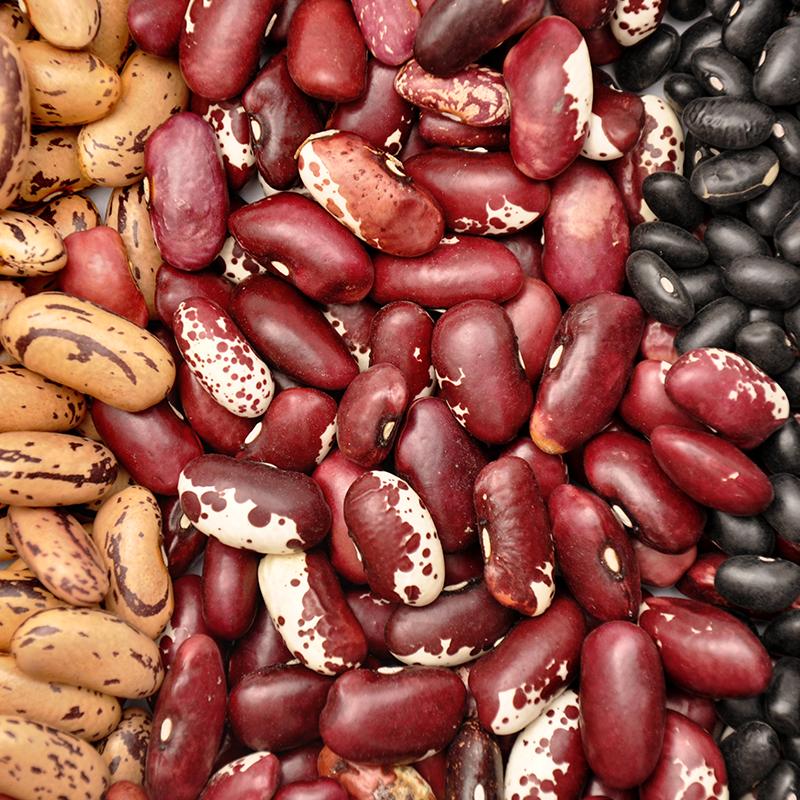 O feijão é uma das principais fontes de proteínas de origem vegetal para a população brasileira. Segundo a matéria veiculada na Revista Viva Saúde, o feijão contém baixo teor de gordura e sódio e é rico em ferro(¹).1-http://revistavivasaude.uol.com.br/nutricao/conheca-os-beneficios-do-feijao/598/. Acesso em 05/05/2015